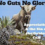 005 No Guts No Glory – Appreciation and the Sin of the Golden Calf