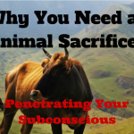 Why you need an animal sacrifice