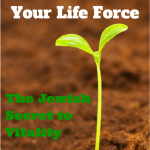 054 How to Increase Your Life Force – The Jewish Secret to Vitality