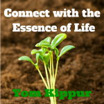 Connect with the  Essence of Life - Yom Kippur