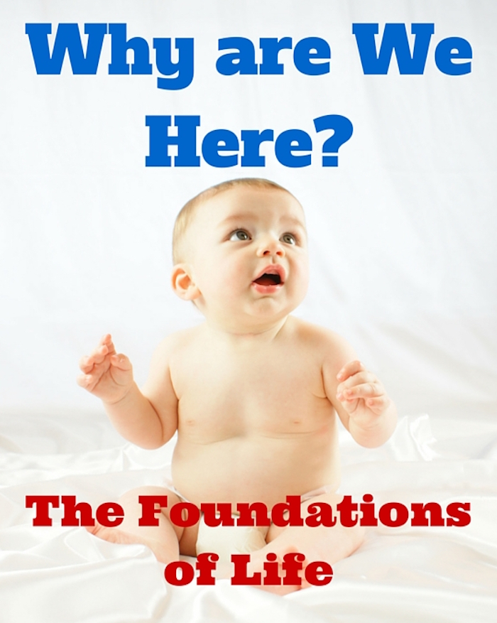 Why are You Here - The Foundations of Life